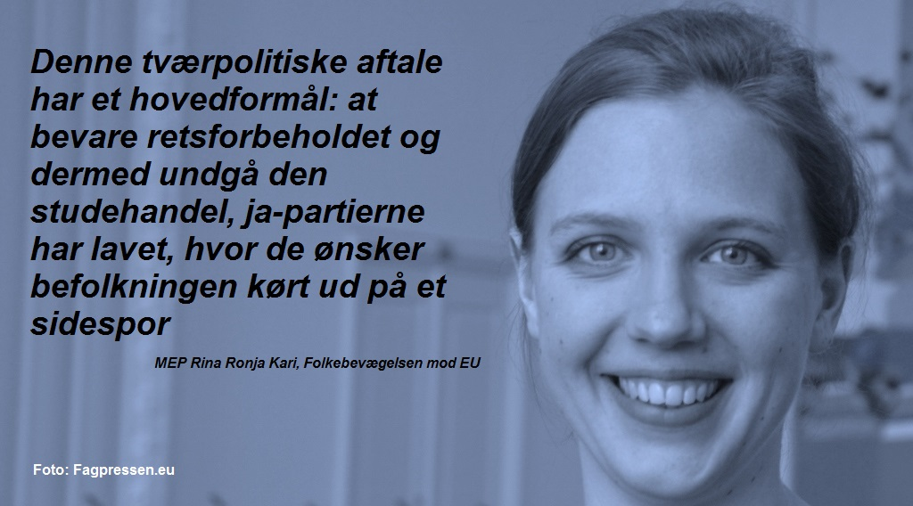 Rina Ronja Kari citatgrafik 050915