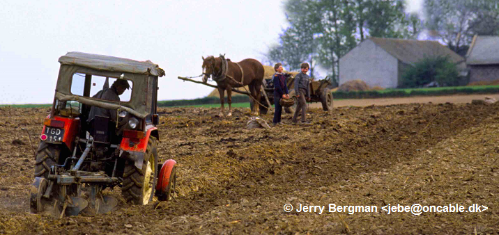 Polsk landbrug Foto Jerry Bergman 120616